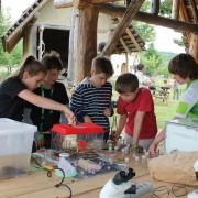 Kinder schauen sich eine Eidechse im Terrarium an