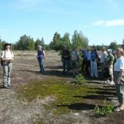 Ranger und Exkursionsteilnehmer in der Heide