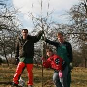 """Drei freiwillige Helfer posieren mit """"ihrem"""" Apfelbaum."""