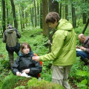 Freiwillige bei Quellforschung im Wald
