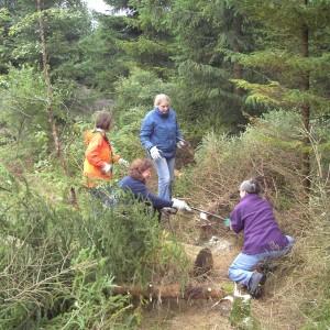 Corporate Volunteering – Freiwilligeneinsätze von Unternehmen